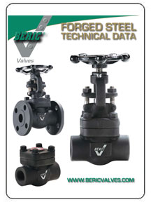 Beric Forged Steel Valves