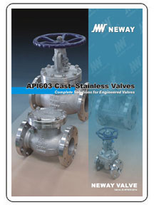 Neway API603 Cast Stainless Valves