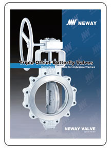 Neway Triple Offset Butterfly Valves